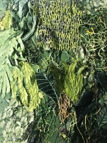 Overgrowth VI, 2018 (Close-up)